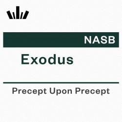 PUP Workbook (NASB) - Exodus
