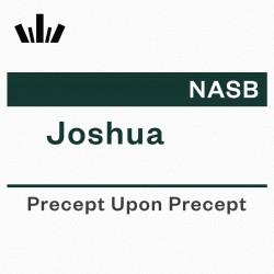 PUP Workbook (NASB) - Joshua