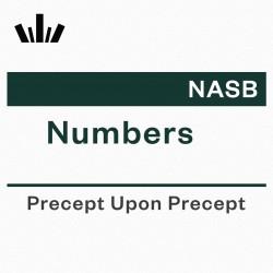 PUP Workbook (NASB) - Numbers