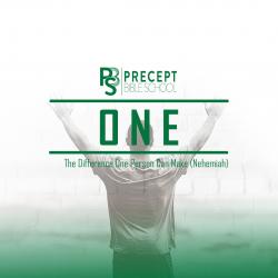 Precept Bible School - ONE: Nehemiah (Online) £65